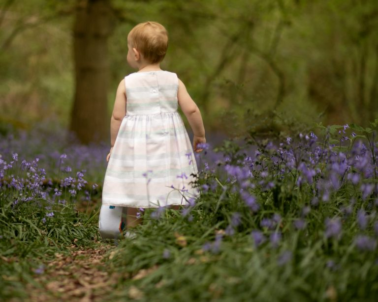 Toddler walking in Boy with teddy Bluebell photoshoot in Sussex family photographer Haywards Heath