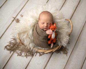 Baby posed in basket holding a fox teddy taken by haywards heath photographer